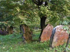800px-Jewish_cemetery_Rymanów